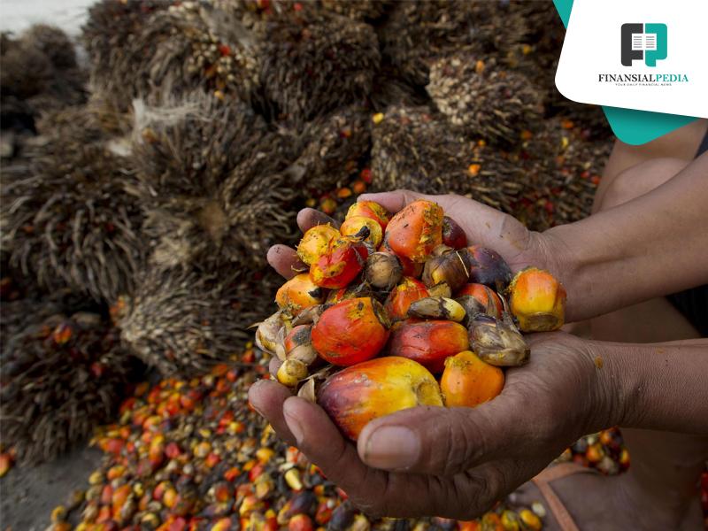Seluruh Saham di 2 Entitas Anak Dijual Eagle High Plantations (BWPT)