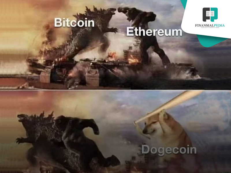 DOGE Coin to the Moon